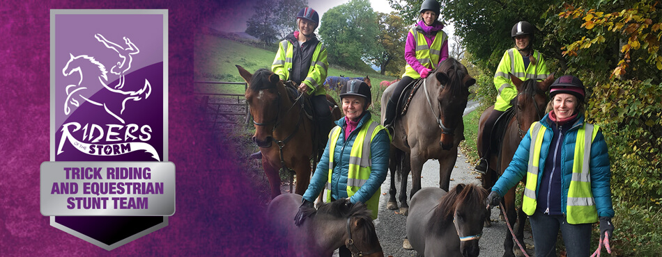 Trick Riding Lessons and Training